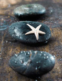 Massage stones with starfish Royalty Free Stock Image