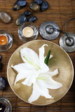 Massage tool Stock Image