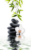 Massage with white orchid and bamboo Royalty Free Stock Images