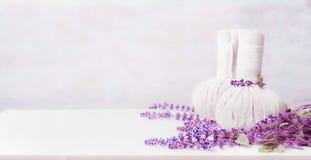 Massageinställning med två växt- kompressbollar och nya örter på vit träbakgrund, främre sikt, baner Sund livsstil royaltyfria bilder