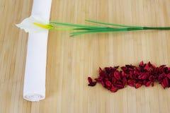 Massageinstallationssonderkommando betriebsbereit lizenzfreies stockfoto