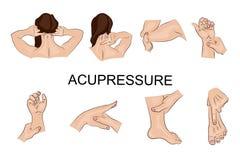 Massagem do ponto Corpo parts ilustração do vetor