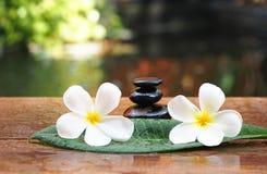 Massagem dos termas com os termas nas folhas, Tailândia da flor e da rocha Foto de Stock Royalty Free