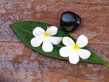 Massagem dos termas com os termas nas folhas, Tailândia da flor e da rocha Fotografia de Stock Royalty Free