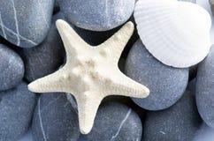 massagen för skönhethuvuddelelement mjölkar naturliga brunnsortstenar Fotografering för Bildbyråer