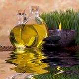 Massageschmieröle und -kerze mit grünem Gras Lizenzfreie Stockbilder