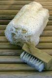 Massaggio della spazzola Immagini Stock Libere da Diritti