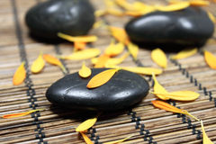 Massaggio delle pietre Immagini Stock