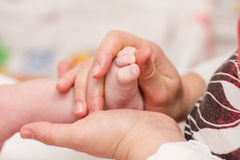 Massaging newborn baby feet Stock Photos