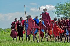 Massai warriors perform the traditional jumping dance ceremony in Tanzania, Africa Royalty Free Stock Images