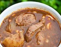Massaman curry Fotografering för Bildbyråer