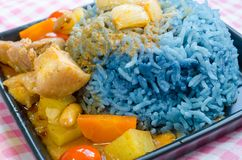 Massaman curry with Butterfly pea cooked rice Stock Images