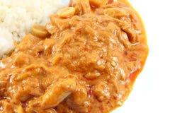 Massaman curry'ego tuńczyk Zdjęcia Stock