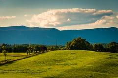 Massanutten山农田和看法,在Shenandoah 库存照片