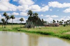 Masse-Nebenfluss-ist lebendes Geschichten-Museum ein Dorf der authentischen Gebäude des 19 Lizenzfreie Stockfotos