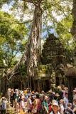 Masse von den Touristen während der Hauptsaison Komplex Ta Prohm nahe Siem Reap, Kambodscha besuchend lizenzfreies stockbild