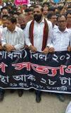 Massen-Satyagraha-Protest Stockfotografie