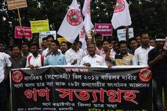 Massen-Satyagraha-Protest Lizenzfreie Stockbilder