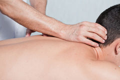 massera Royaltyfria Foton