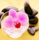 Massera stenar med orchiden Royaltyfria Bilder