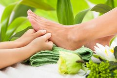 Masseuse massaging woman's foot against leaves. Cropped image of masseuse massaging woman's foot against leaves at spa Stock Photography