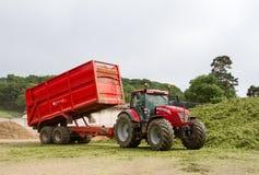 Massey fergusen i trattori ed il rimorchio al morsetto del silaggio Fotografia Stock