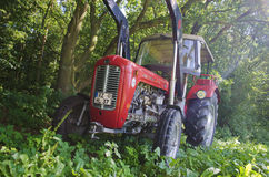 Massey Ferguson MF35 Royalty Free Stock Photography