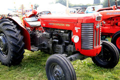 Massey Ferguson 65 tractor. A vintage ( introduced 1957 ) Massey Ferguson 65 on display at the Moorgreen country show, Nottinghamshire, England, UK Stock Images