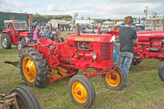 Massey Harris tractor Royalty Free Stock Images