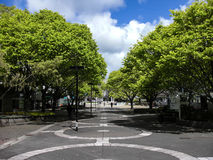 Massey University in Palmerston North NZ Stock Images