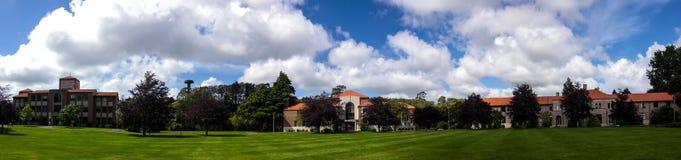Massey University in Palmerston North NZ Panorama Royalty Free Stock Image