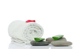 Massez les pierres, l'aloès et les pétales Photos libres de droits