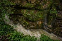Massi del canyon di Martvili grandi sul lato del fiume immagini stock