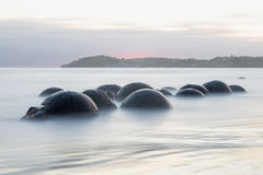 Massi di Moeraki, Nuova Zelanda fotografia stock libera da diritti