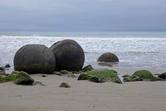 Massi di Moeraki sulla spiaggia di Koehohe in Nuova Zelanda fotografia stock libera da diritti