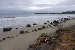 Massi di Moeraki sulla spiaggia di Koehohe in Nuova Zelanda immagine stock libera da diritti