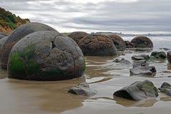 Massi di Moeraki sulla spiaggia di Koehohe in Nuova Zelanda fotografie stock libere da diritti