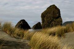 Massi sulla spiaggia sabbiosa Immagine Stock