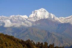 Massiccio di Annapurna. Il Nepal. Immagini Stock Libere da Diritti