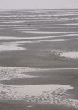 Massief Sandy Beach, Tidepools en Verre Cijfers Royalty-vrije Stock Foto's