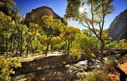 Massieve Bergen en Kristallijne Stroom in Zion National Park royalty-vrije stock afbeeldingen