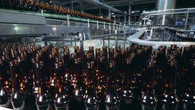 Massieve bewegende die het bierflessen van de vervoerdersriem van glas worden gemaakt stock footage