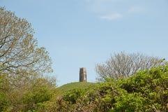 Massif de roche de Glastonbury par les arbres Photographie stock libre de droits