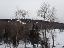 Massif du Sud στοκ φωτογραφία