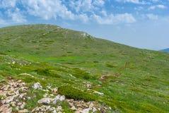 Massif montagneux de Chatyr-Dah en Crimée photo stock