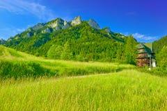 Massiv för tre kronor i de Pieniny bergen Arkivfoto