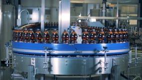 Massiv industriell transportband med åtskilliga ölflaskor som fortskrider den stock video