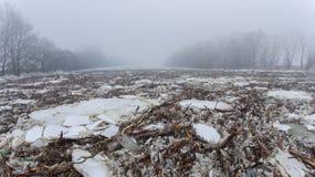 Massiva isisflak på den Tisza floden Arkivbild