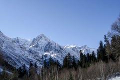 Massiva Kaukasus berg norr panorama för caucasus liggandeberg Blå himmel och snöig berg Fotografering för Bildbyråer