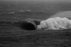 Massive Barrel Wave Breaking on Shallow Reef Black and White. A wave slabs raw ocean power onto an incredibly shallow rock shelf, exploding white wash and Royalty Free Stock Photos